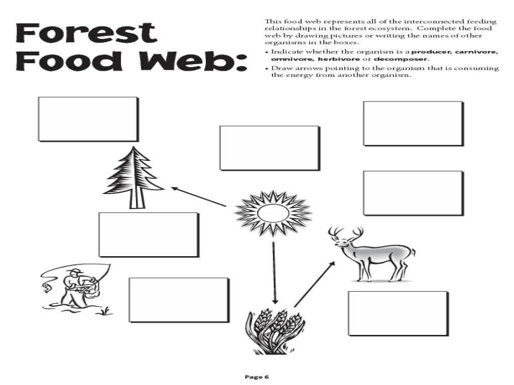Domain Range and End Behavior Worksheet Along with Food Chain and Food Web Worksheet Worksheets Tutsstar Thou