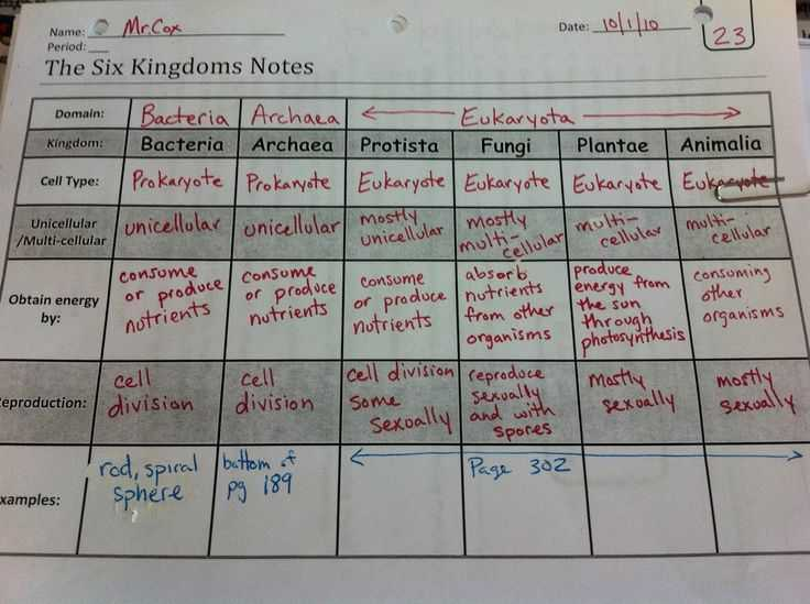 Domains and Kingdoms Worksheet with 124 Best 6th Grade Science Life Images On Pinterest