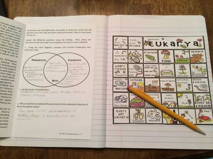 Domains and Kingdoms Worksheet with Six Kingdoms Of Life Interactive Notebook Puzzle