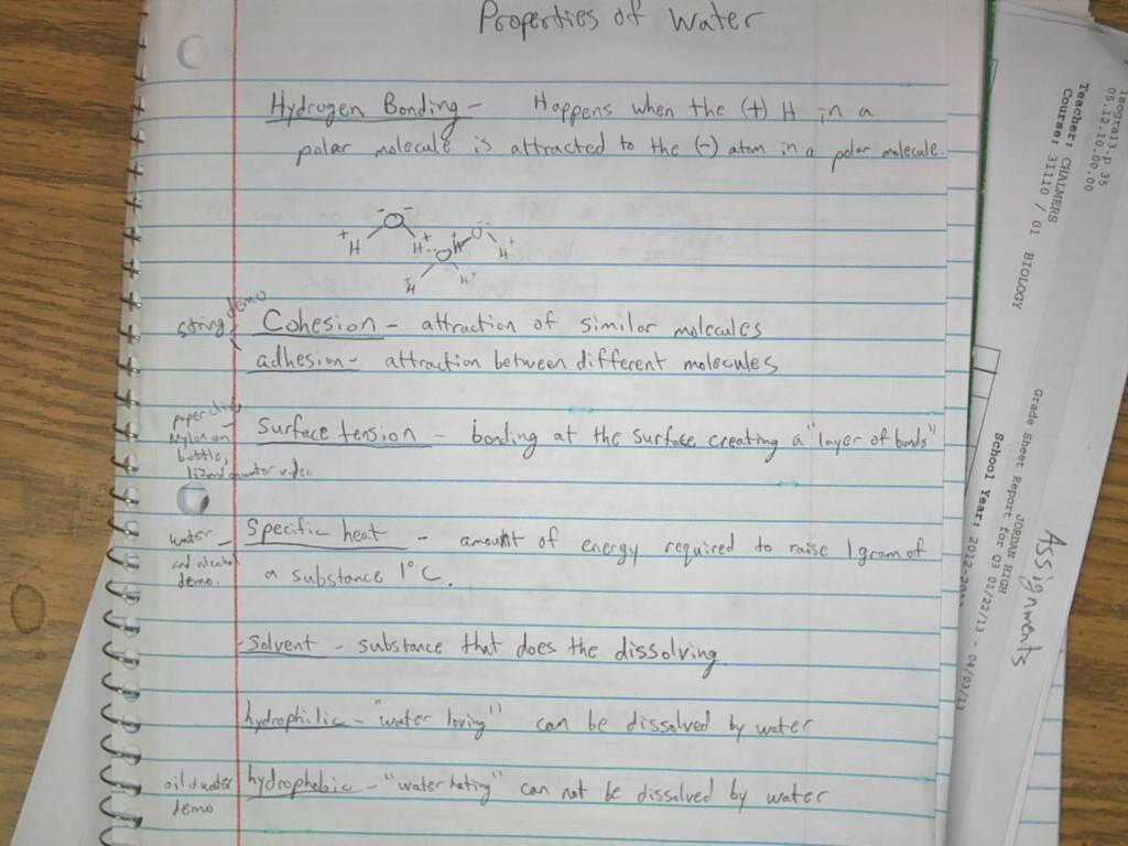 Earth's Early History Worksheet Answers Also Word Equations Worksheet Answers Super Teacher Worksheets