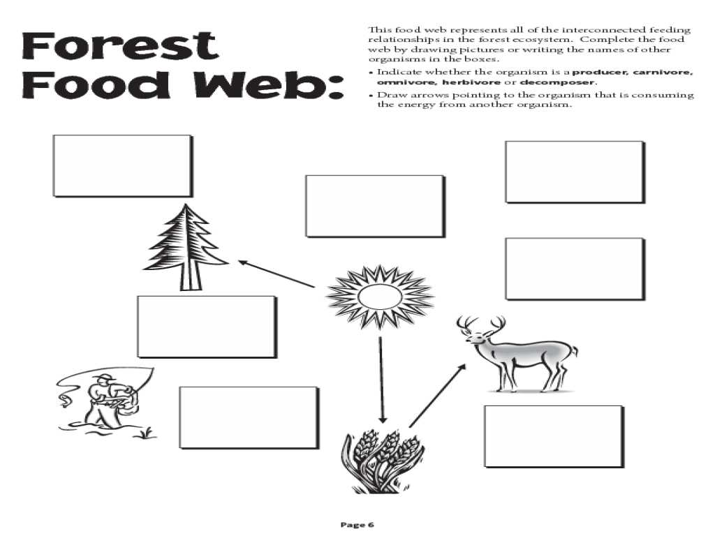 Food Chain Worksheet Answers as Well as Free Food Chain Worksheet Worksheets for All Download and Sh