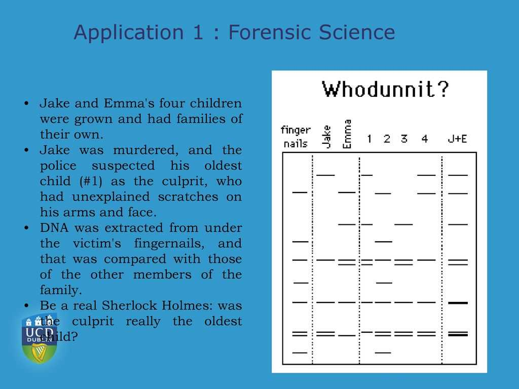 Forensic Hair Analysis Worksheet with Introduction to Chromatography Ppt