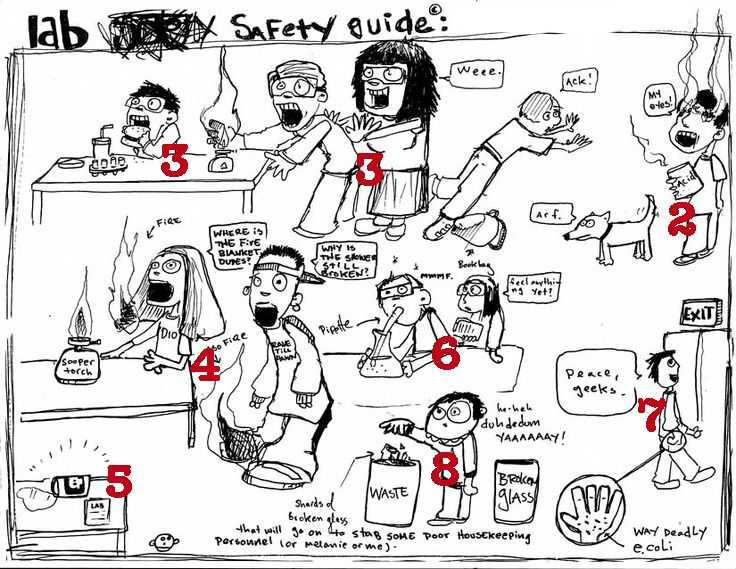 Lab Safety Worksheet Answers Along with 132 Best Safety In the Science Lab Images On Pinterest