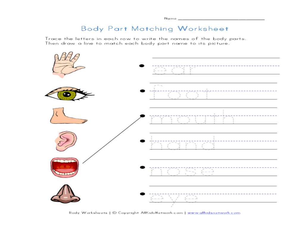 Mental Health Worksheets Pdf Along with Free Printable Body Parts Matching Worksheet Goodsnyc