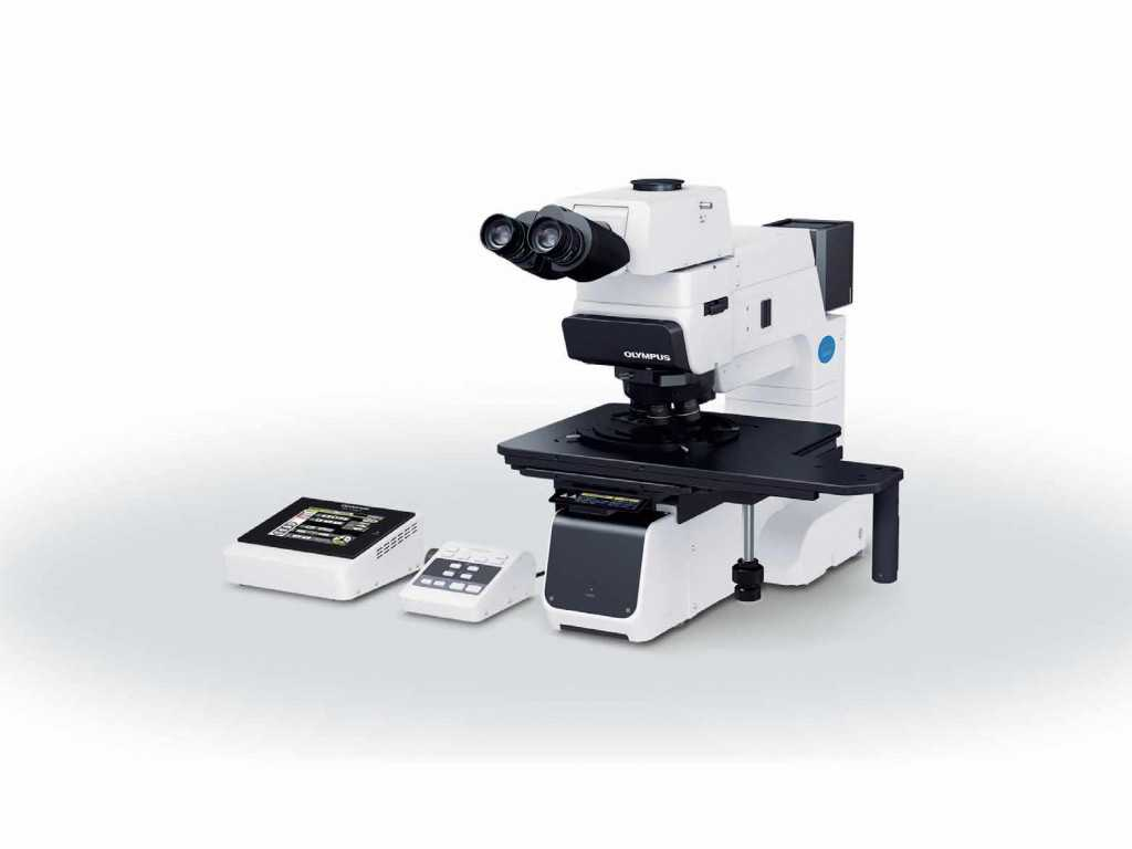 Microscope Slide Observation Worksheet as Well as Behang Microscoop Mx61a Microsysteem Hd Breedbeeld High