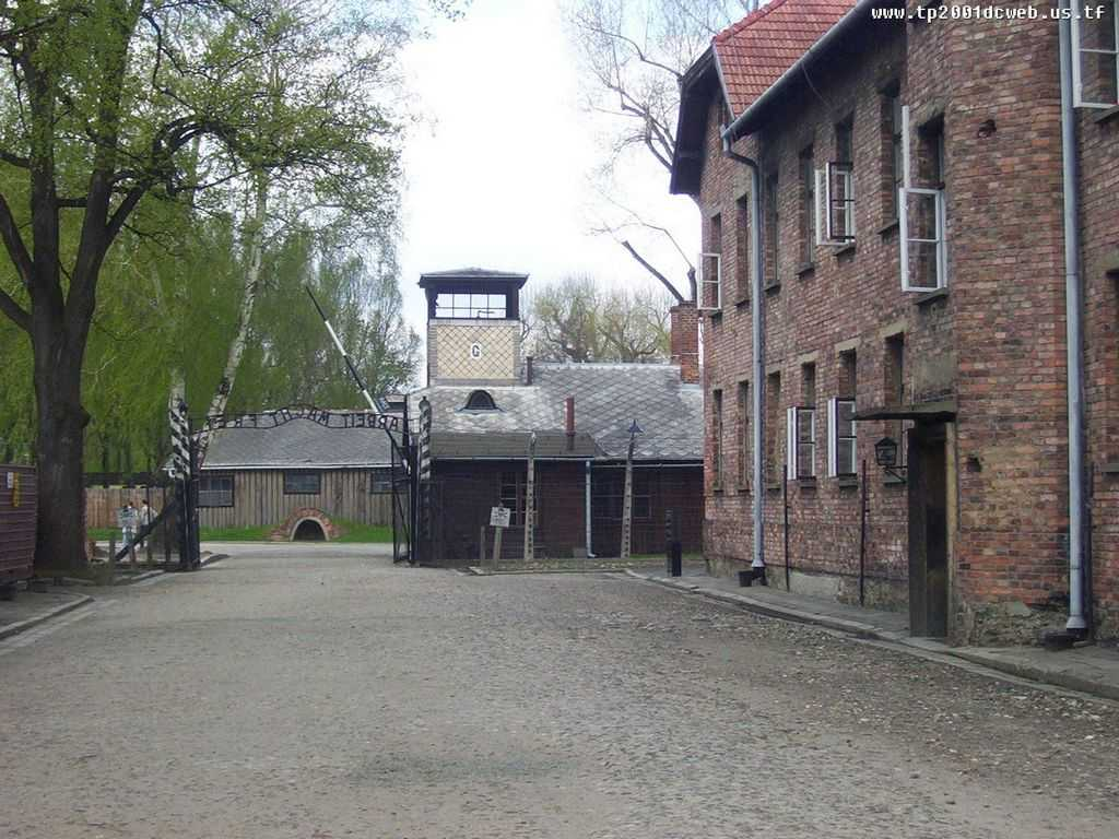 Oprah and Elie Wiesel at Auschwitz Worksheet Answers with Owicim Auschwitz Awesomelandscapesbit