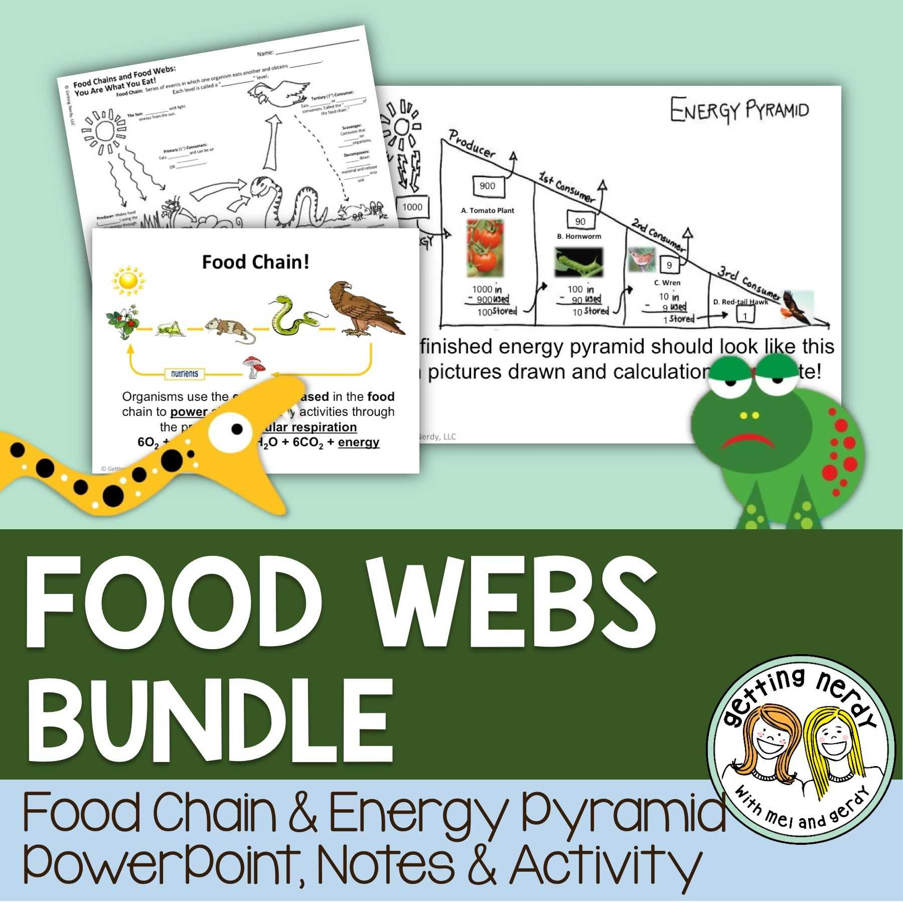 Physics Worksheets with Answers as Well as Food Chains Food Webs and Energy Pyramids