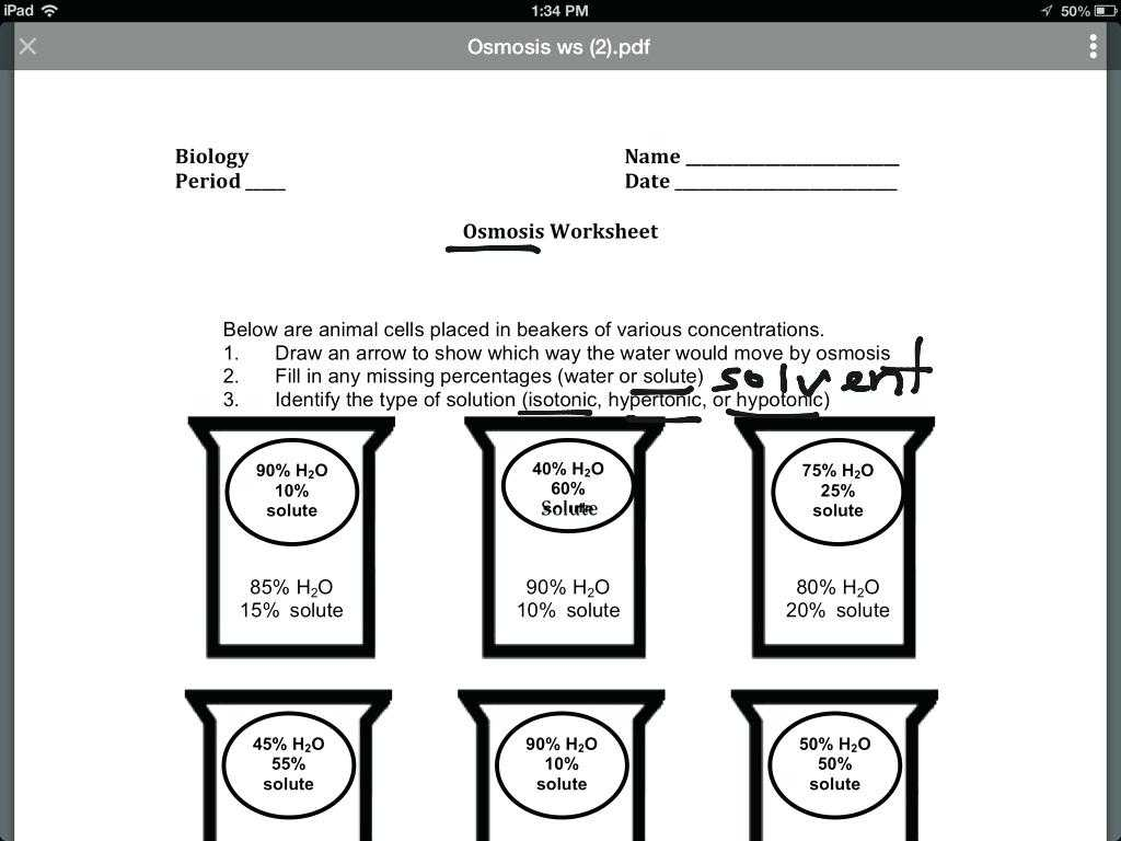 Stress Worksheets for Middle School with Osmosis Worksheet Answer Key the Best Worksheets Image Colle