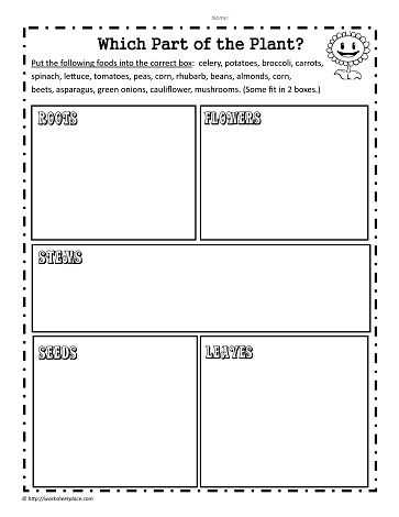 The Role Of Media Worksheet Along with which Plant Part School Pinterest