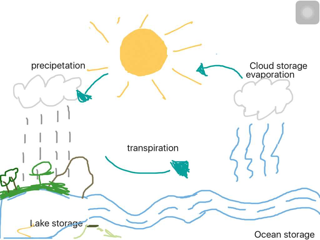 The Water Cycle Worksheet Answer Key as Well as Water Cyclebucklands Beach Primary School