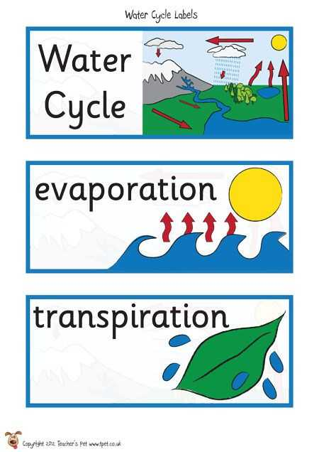 Water Water Everywhere Worksheet Answers Along with 7 Best Third Term Water theme Jenna Images On Pinterest