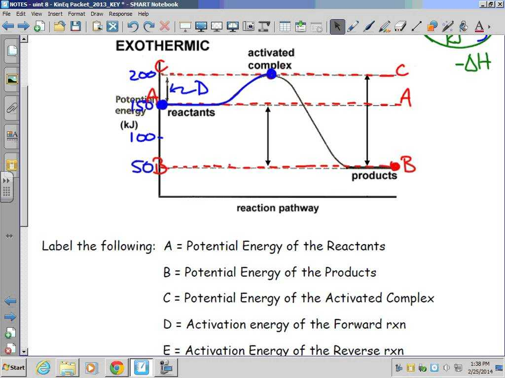 Worksheet Kinetic and Potential Energy Problems and Kinetics thermodynamics and Equilibrium Exothermic Potential