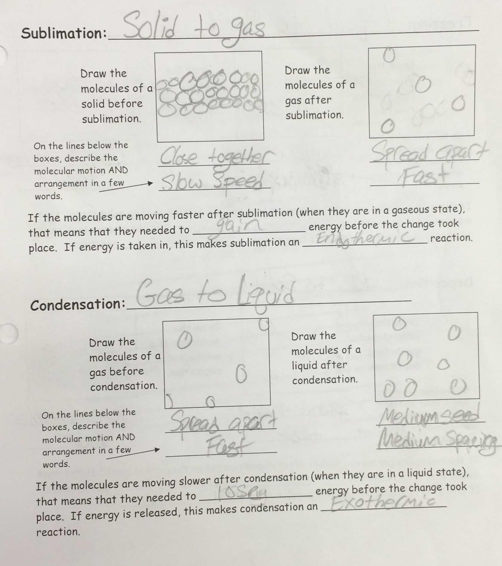 Daffynition Decoder Math Worksheet Answer Key + My PDF ...