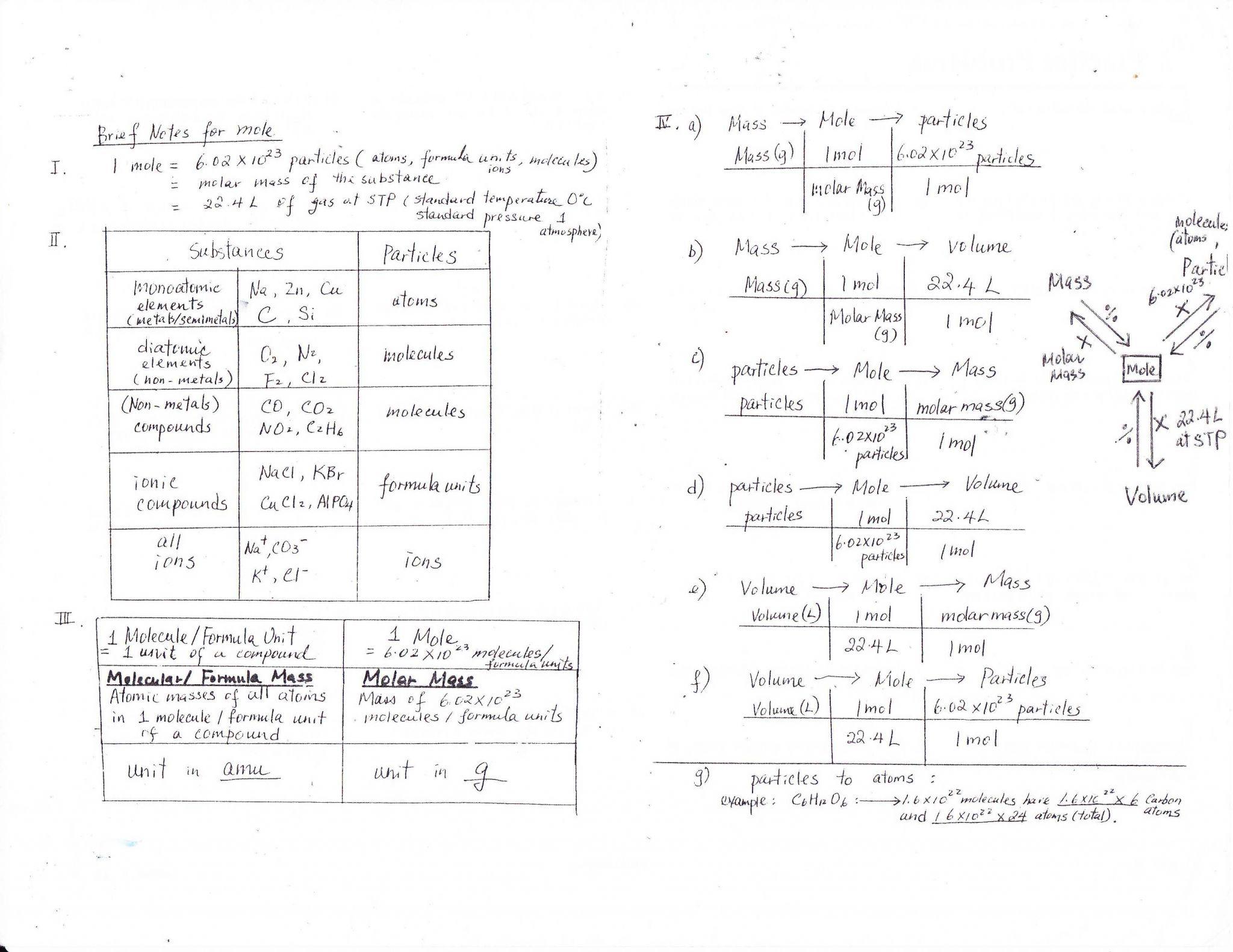Karyotype Worksheet Answer Key | Semesprit