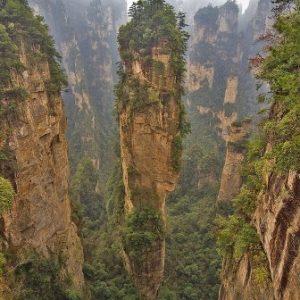 semestafakta-Ivindo National Park2