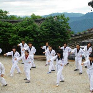 semestafakta-Taekwondo2