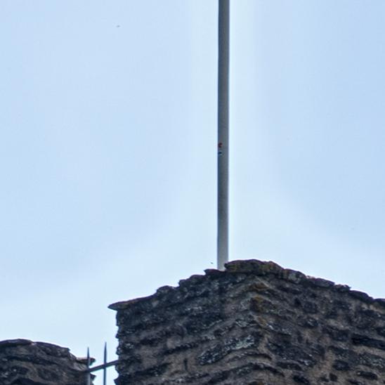 Trip Duitsland (zwartwoud) 017 vlag