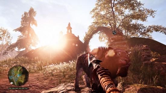 Quel beau soleil... oh look! A Tiger!