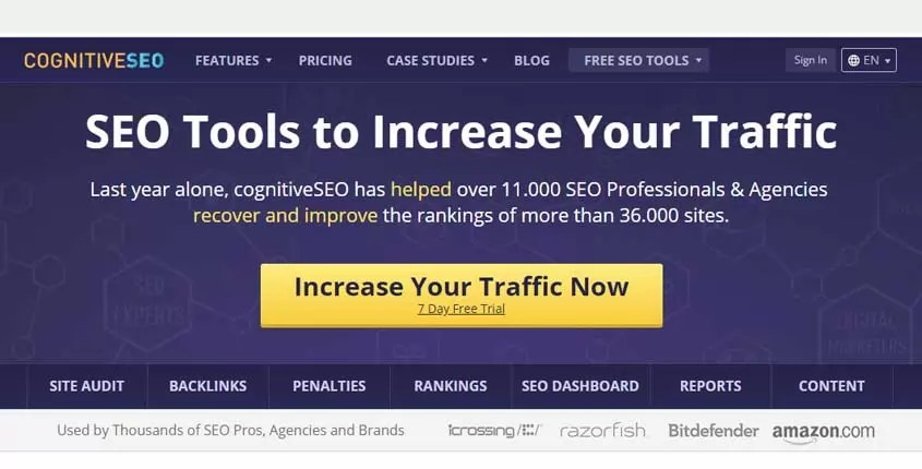 cognitiveSEO tool