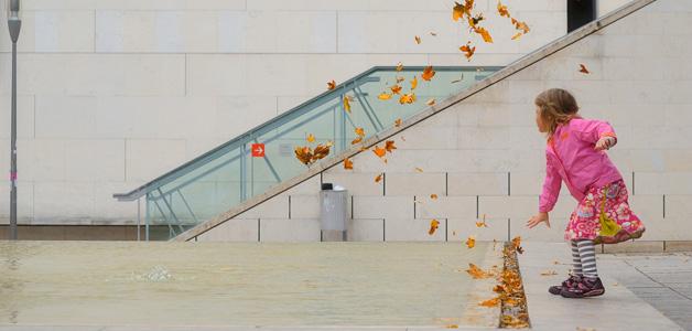 Leopold Museum Herbstlaub