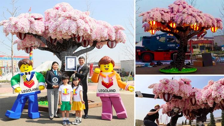 Ciliegio da record fatto con 800.000 mattoncini Lego