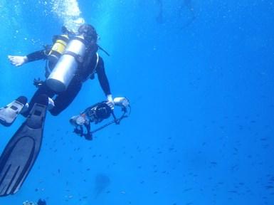 Cazamos al cazador: el fotógrafo de Poseidon