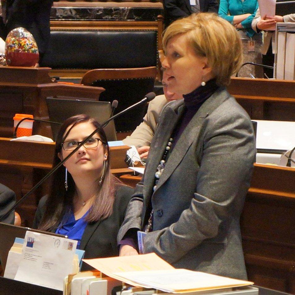 State Senator Liz Mathis of Robins