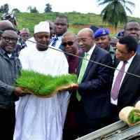 Emefiele, Gov Bagudu commend Ayade on agro-industrial projects