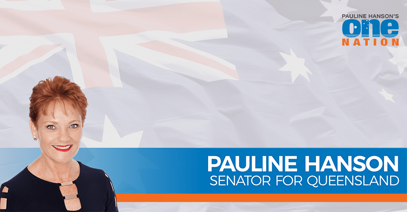 The Government holds Parliament in contempt with trade deal secrecy - Senator Pauline Hanson