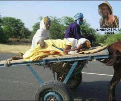 bougane 7 - Senenews - Actualité au Sénégal, Politique, Économie, Sport