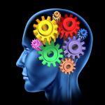 Os avanços da neurocirurgia em pauta