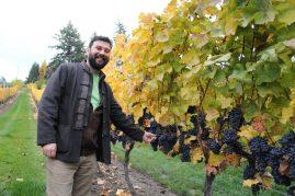 Summerhill CEO, Ezra Cipes examines the harvest.