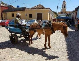 Trinidad de Cuba - common horse-drawn wagon on cobbletoned strreet - J.D.Durand