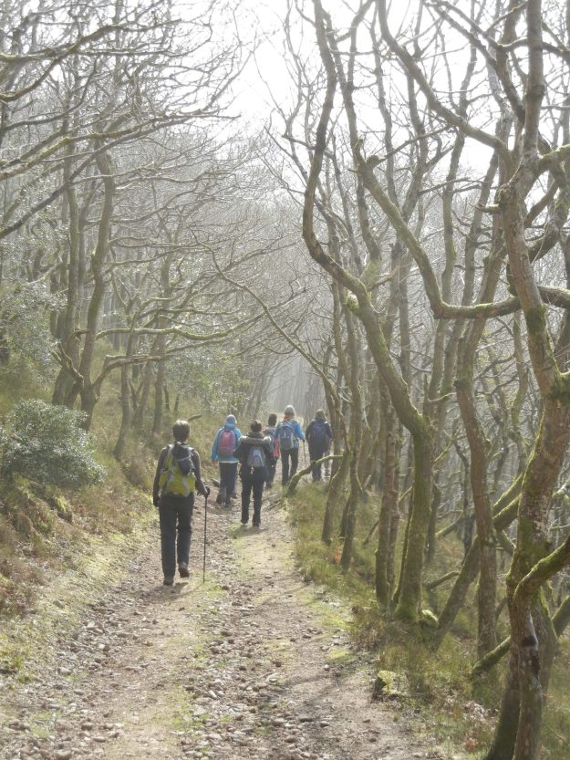 England Walking Tours