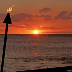 A Tasteful Awakening on Maui