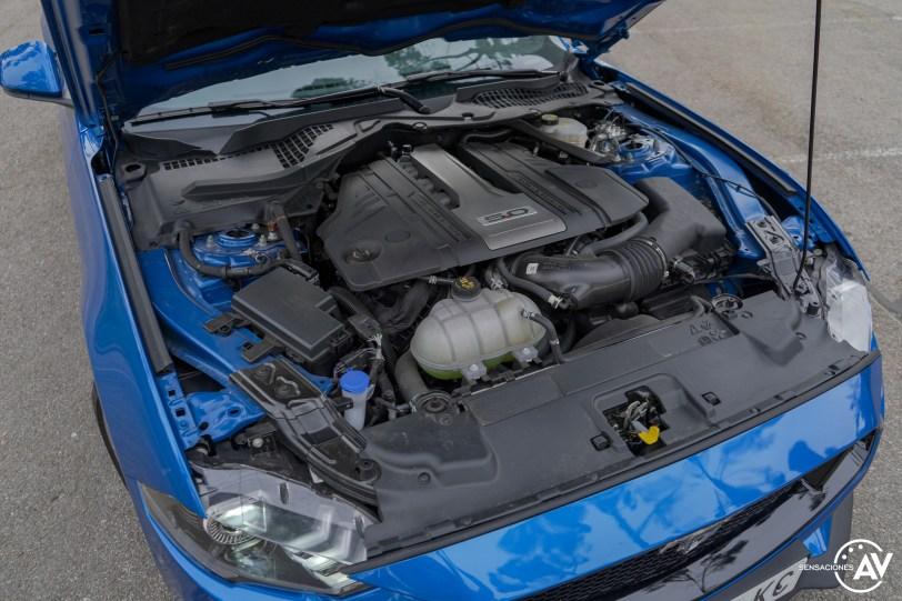 Motor Ford Mustang - Prueba Ford Mustang GT Fastback 2021: Puro músculo. ¡Que Dios bendiga a América!