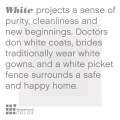 Meaning of white squirrel sighting myideasbedroom com