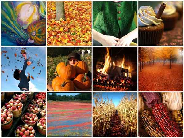 Seasonal Fall Coffee Desktop Wallpaper Fall Colors Amp 9 Others Reasons I M Distracted