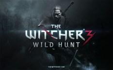 the-witcher-3-bild-011