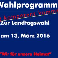 Meinungsmontag: AfD-Parteiprogramm für Sachsen-Anhalt, heiter bis wolkig kommentiert