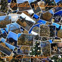 Frohe Weihnachten! #weihnachten #magdeburg #lichterweltmagdeburg #christmas - via Instagram