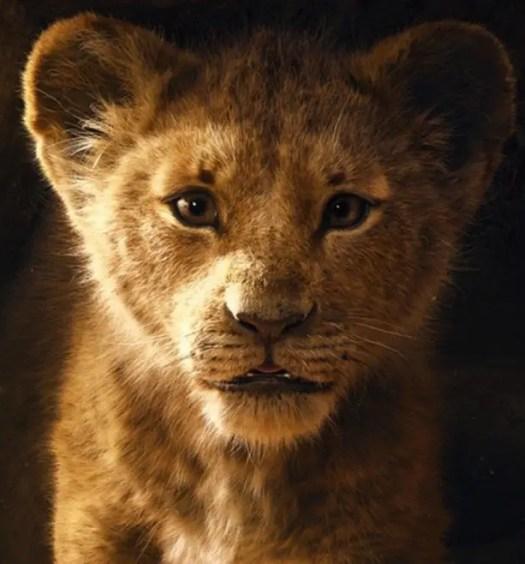 lejonkungen spelfilm 2019
