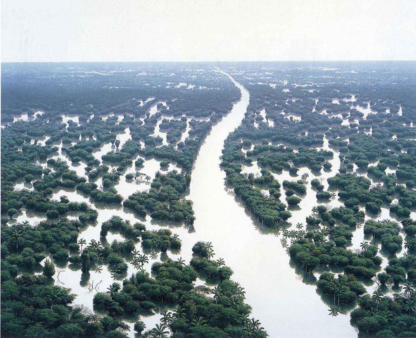 Tomás Sánchez Inundacion de Rio de Aguas Blancas, 1998