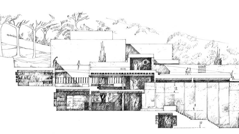 André Ravéreau, Musée d'Art Musulman d'Alger