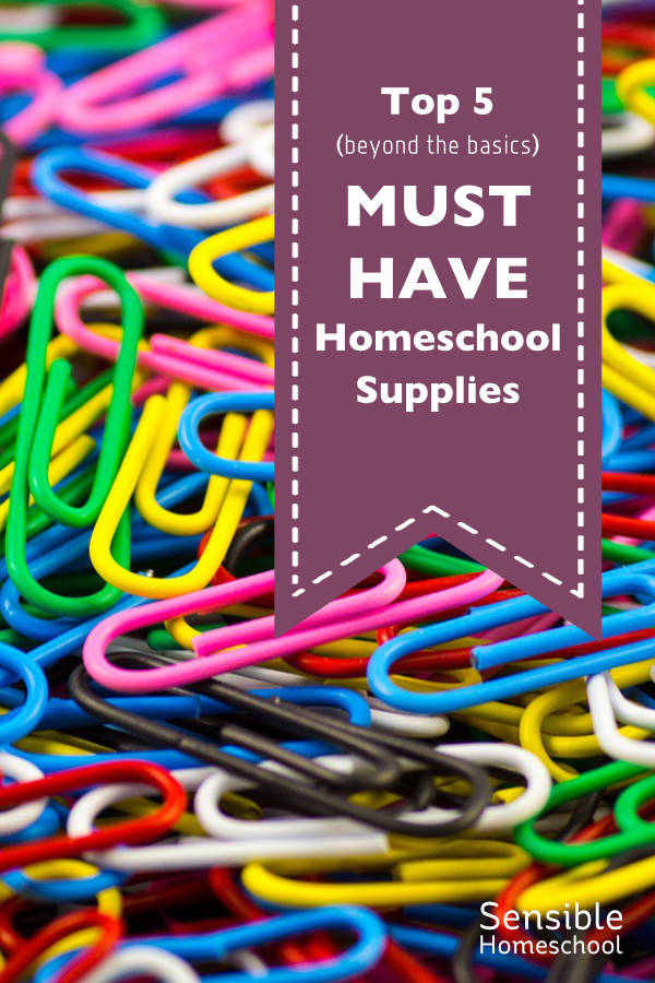 Top 5 (beyond the basics) Must Have Homeschool Supplies purple ribbon on paperclip background