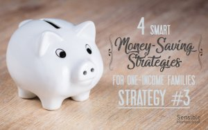 4 smart money-saving strategies for one-income families strategy #3 with piggy bank
