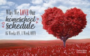 Why We Love Our Homeschool Schedule (6 weeks on, 1 week off) title with red field and red heart-shaped tree