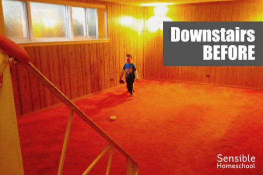 Downstairs Before renovation with red carpet and wood panel walls and bad lighting