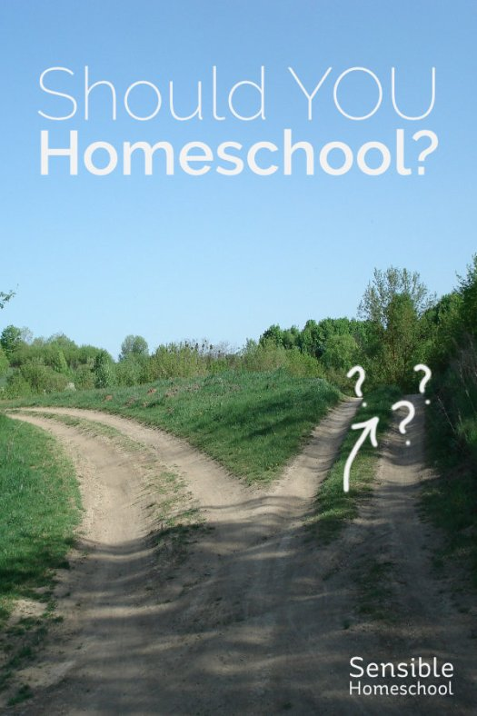 Should You Homeschool? title on background with fork in the road