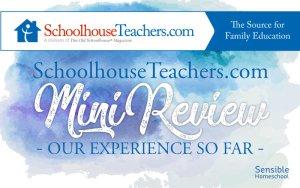 Schoolhouse Teachers Mini Review title on watercolor background
